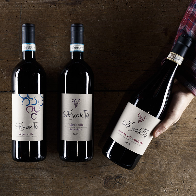 Wines in respect of the territory